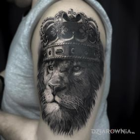 Król lew
