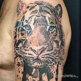 Taki inny tygrys