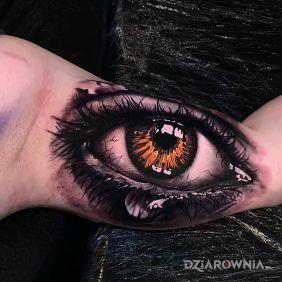 Mega oko