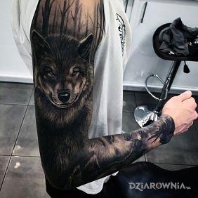 Rękaw z wilkiem i lasem