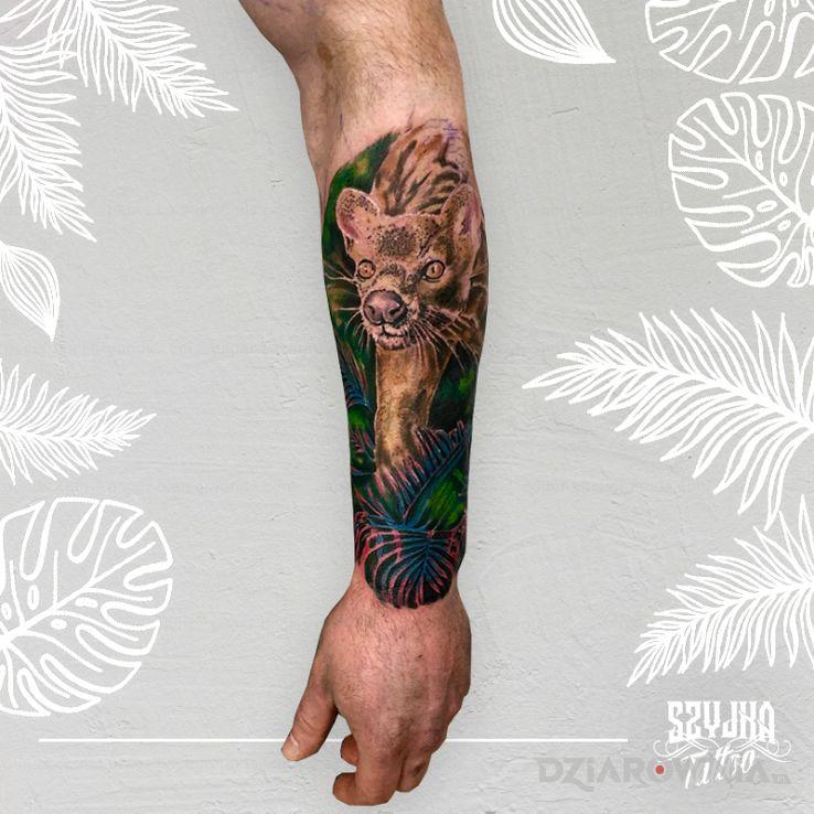 Tatuaż fossa - kolorowe