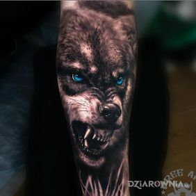 Złowrogi wilk