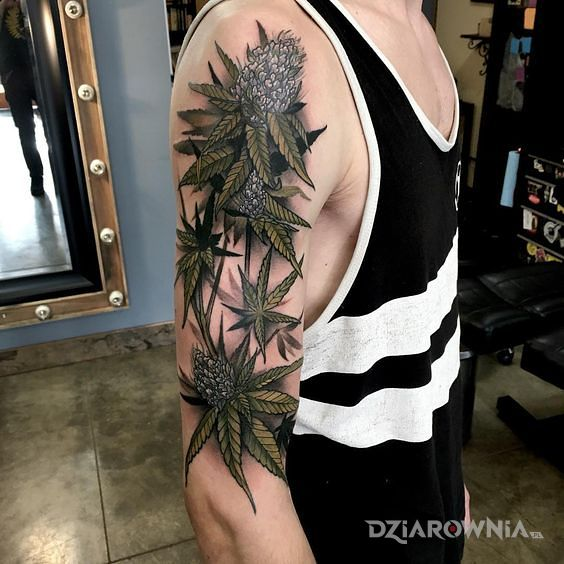 Tatuaż liście i kwiaty marihuany w motywie kolorowe i stylu realistyczne na ramieniu