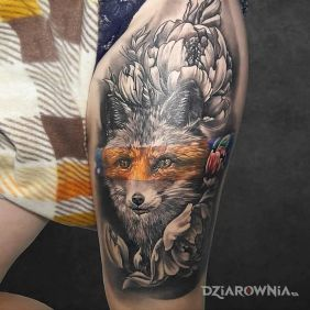 Nie do końca rudy lis