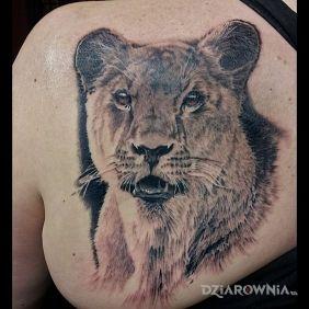 Realistyczna lwica