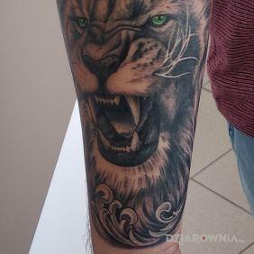 Lew Lion