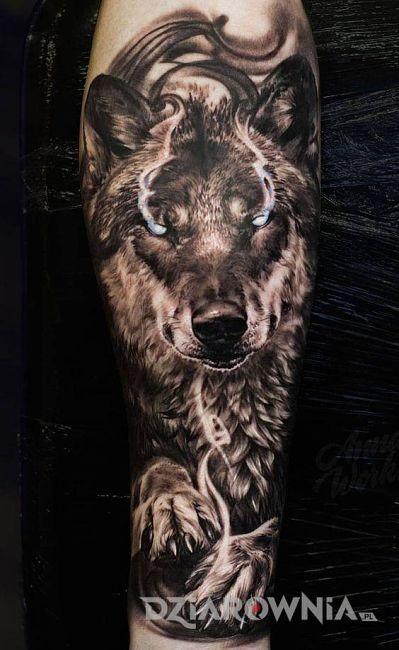 Znaczenie Tatuażu Wilk Symbolika I Historia Wilka