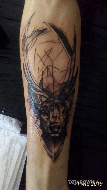 Tatuaż Jeleń Autor Adrian Sebastian Michalski Dziarowniapl