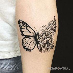 Tatuaże Motyle Wzory I Galeria Dziarowniapl