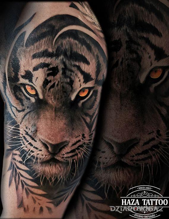 Tatuaż Tygrys Cover Autor Haza Tattoo Dziarowniapl