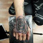 Róże C.D.N