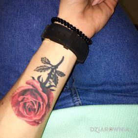 Tatuaże Kwiaty Wzory I Galeria Dziarowniapl