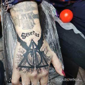 Harry Potter, insygnia śmierci, Severus