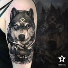 Wilk z Północy ;)