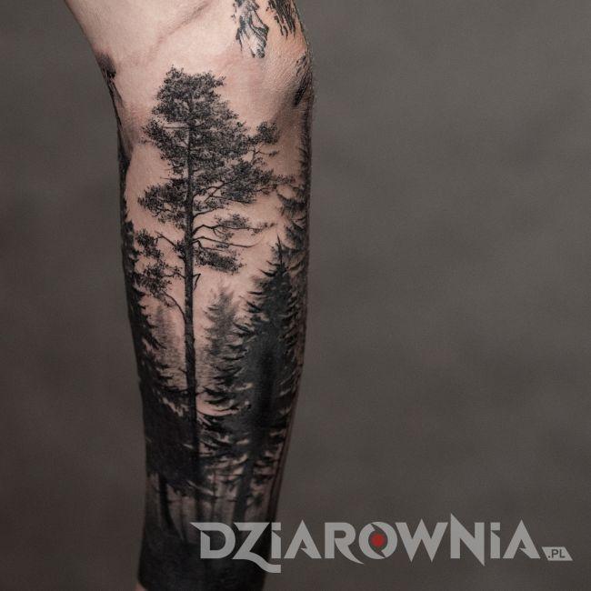 Tatuaż las dookoła ramienia u chłopaka