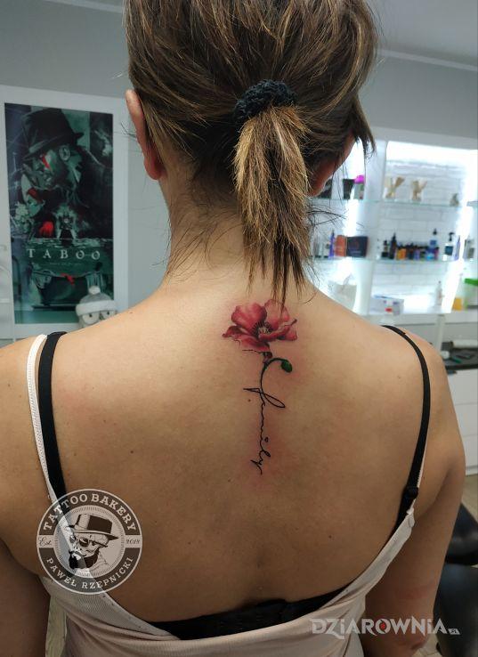 Tatuaż mak - kwiaty