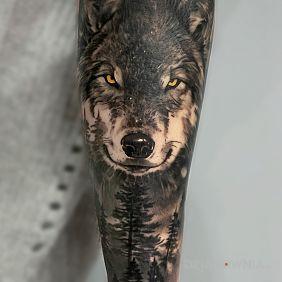 Wilk z lasem