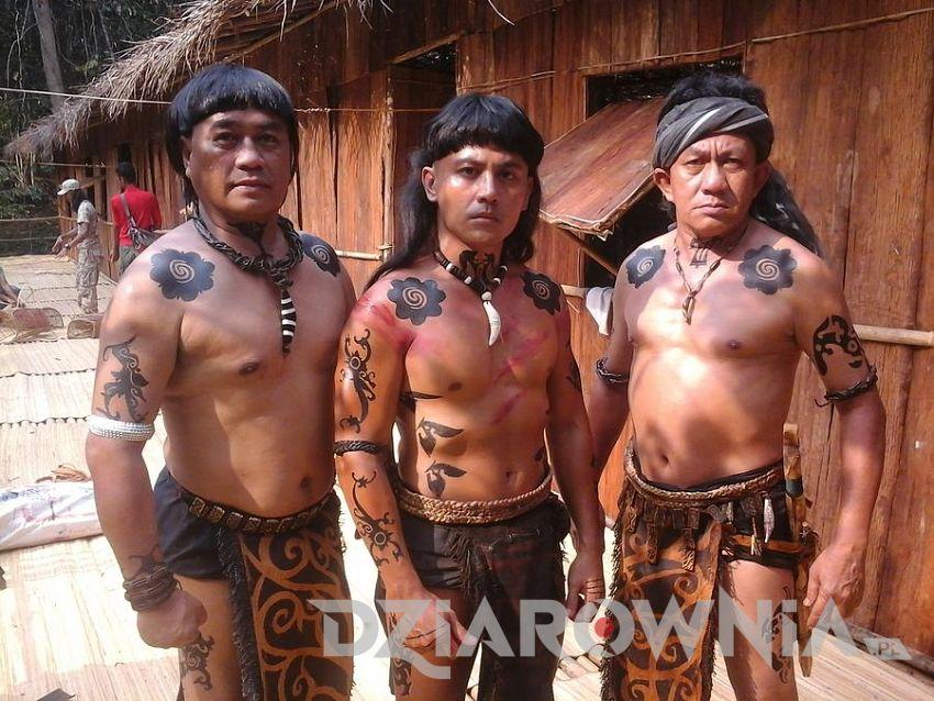 Tatuaże iban