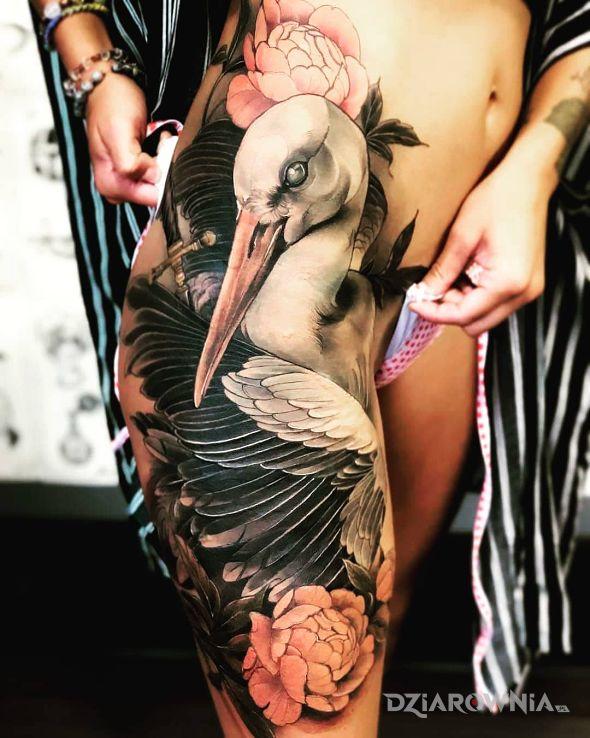 Tatuaż czy to bocian - kolorowe