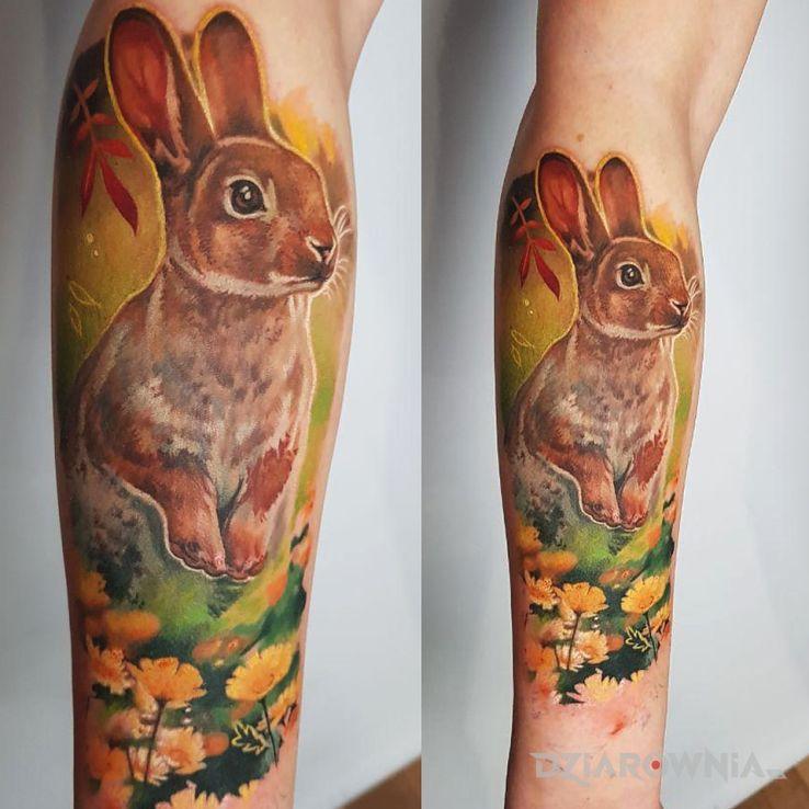 Tatuaż królik - zwierzęta