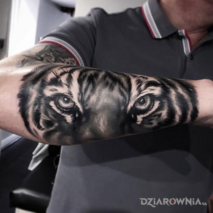 Tatuaż Oczy Tygrysa Autor Matrioszka Dziarowniapl