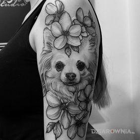 Pies / Kwiaty