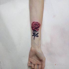 Róża (cover napisu)