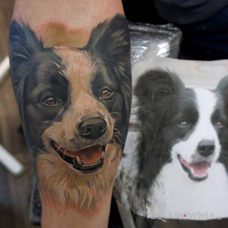 Tatuaż pies - czarno-szare