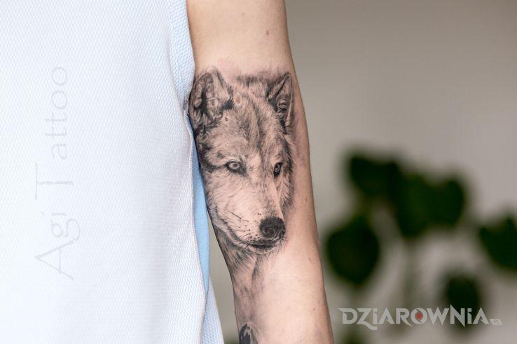 Tatuaż mega realistyczny wilk - zwierzęta