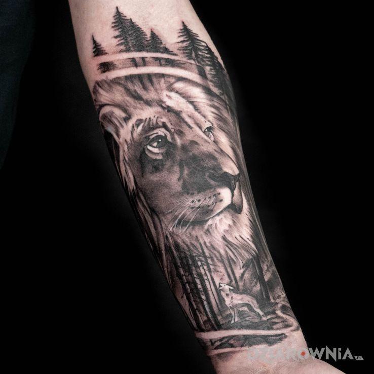 Tatuaż lew i wilk - 3D