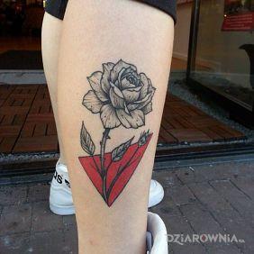 Róża z czerwonym trójkątem