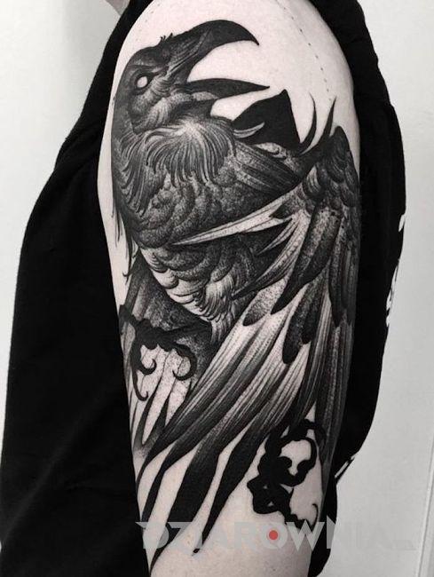tatuaż z czarnym krukiem na ramieniu