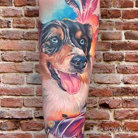Pies / Kolorowy Realizm