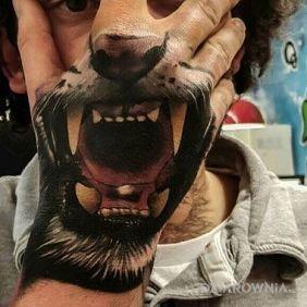 Paszcza lwa