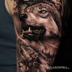 Wataha wilków