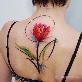 Tulipan w akwareli