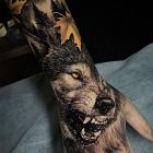 Wilk z kłami na wierzchu