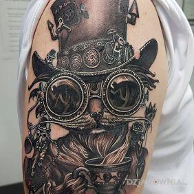 Kociak w kapeluszu