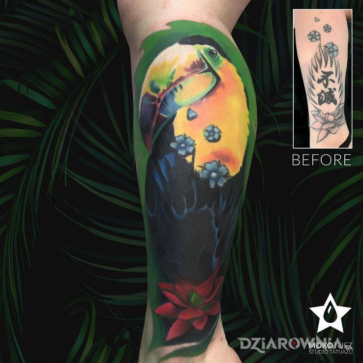 Tatuaż cover up - zwierzęta