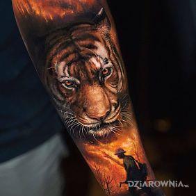 Tygrys tiger