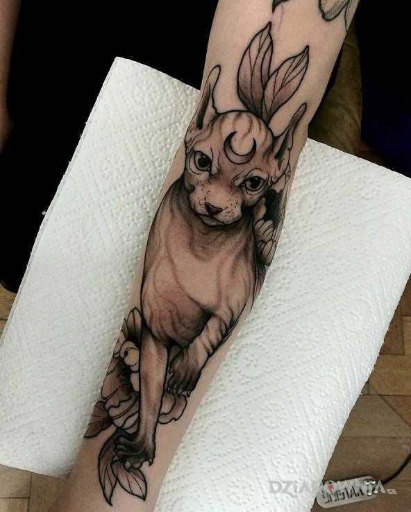 Tatuaż kot - zwierzęta