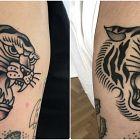 Tygrys / Zagojony vs Świeży