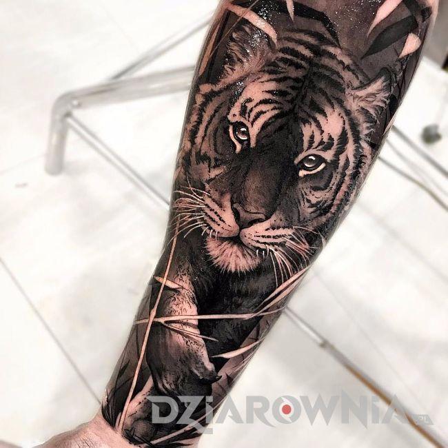 tatuaż tygrys