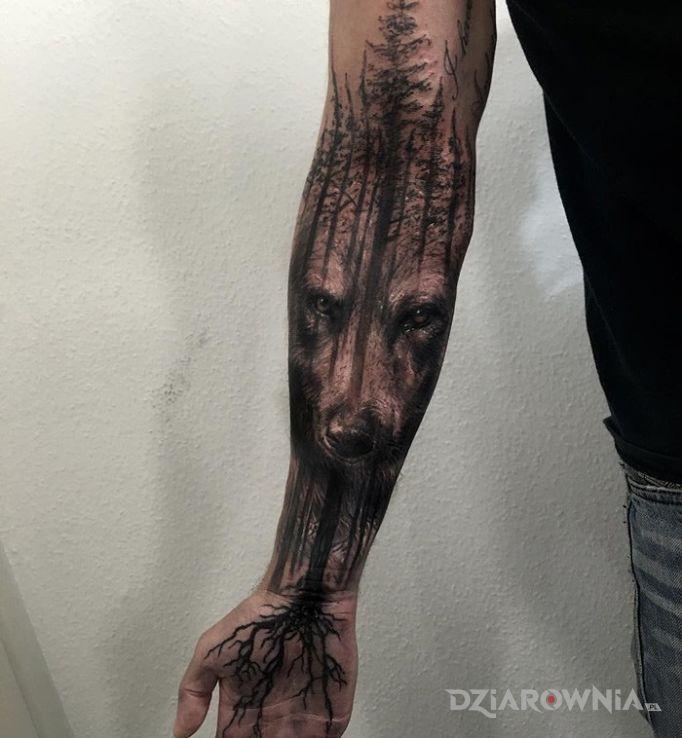 Tatuaż niedźwiedź w motywie zwierzęta i stylu realistyczne na przedramieniu