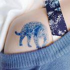 Błękitny dziki kot