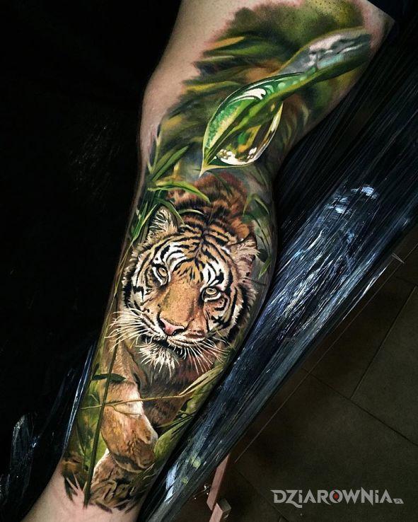 Tatuaż Tygrys Autor Bugat Dziarowniapl