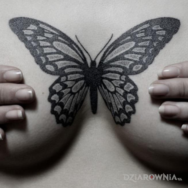 Tatuaż czarny motyl w motywie czarno-szare i stylu graficzne / ilustracyjne na klatce