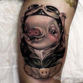 Latajaca swinia