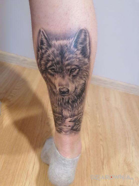 Tatuaż wilk w motywie zwierzęta i stylu realistyczne na łydce