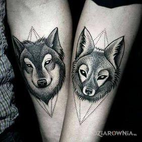 Wilk i wilczyca